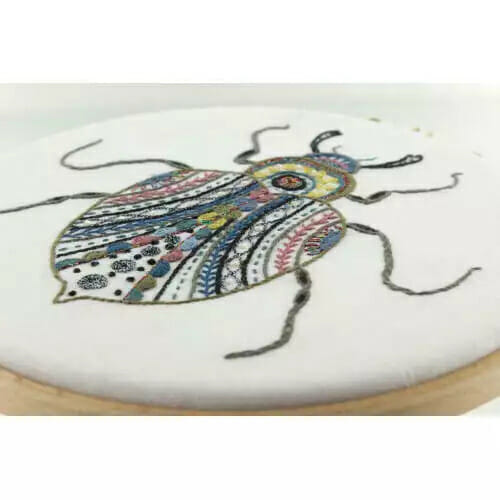 barnabe le scarabee chat dans l aiguille 1 1